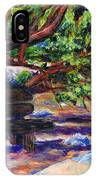 Peaceful Bench IPhone Case