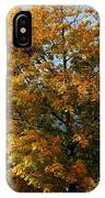 Peaceful Country Road IPhone Case