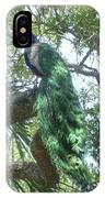 Peaceful Peacock IPhone Case