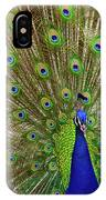 Peacock 1 IPhone Case