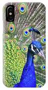 Peacock Colors IPhone Case