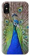 Peacock Displaying His Plumage IPhone Case