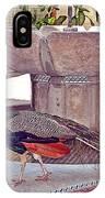 Peacock - Havana Cuba IPhone Case