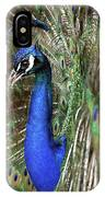 Peacock Mating Season IPhone Case