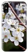 Pear Tree Blossoms IIi IPhone Case