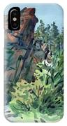 Pecos Canyon IPhone Case