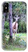 Peekaboo Deer IPhone Case