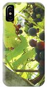 Peeking At Grapes IPhone Case