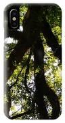 Peeks Of Sun Rays IPhone Case