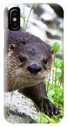 Peering Otter IPhone Case