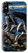 Pelican Fiesta IPhone Case