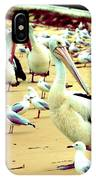 Pelicans At Pearl Beach 4.1 IPhone Case