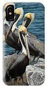 Pelicans Fort Pierce, Fl. Jetty IPhone Case
