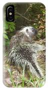 Pennsylvania Porcupine IPhone Case