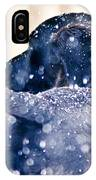 Pepper And The Snow Storm IPhone Case