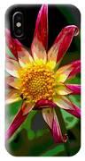 Peppermint Sunburst 2 IPhone Case