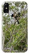 Perched Anhinga IPhone Case