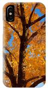 Perfect Autumn Day With Blue Skies IPhone Case