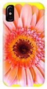 Petal Pop Designs IPhone Case