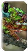 Ambilobe Panther Chameleon IPhone Case
