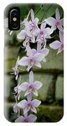 Phalaenopsis Orchid 2 IPhone Case