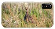 Pheasant Hen IPhone X Case