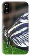 Piano Key Butterfly IPhone Case
