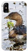 Pied Billed Grebe IPhone Case