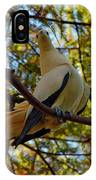 Pied Imperial Pigeon IPhone Case