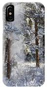 Pike National Forest Snowstorm IPhone Case