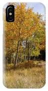Pikes Peak Splendor IPhone Case