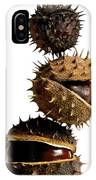 Pile Of Chestnuts IPhone Case