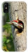 Pileated #29 IPhone Case