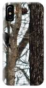 Pileated Billed Woodpecker IPhone Case