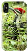Pileated Woodpecker On The Ground No. 1 IPhone Case