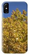 Pin Oaks In The Fall No 2 IPhone Case