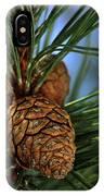 Pine Cone 2 IPhone Case