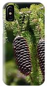 Pine Cones On The Bough IPhone Case