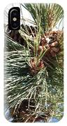 Pine Cones Over Lake Tahoe IPhone Case