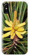 Pine In Bloom IPhone Case