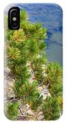 Pine Needles Over Water IPhone Case