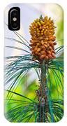 Pine Road IPhone Case