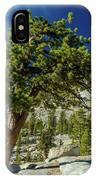 Pine Tree In Yosemite IPhone Case