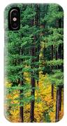Pine Trees In Autumn IPhone Case