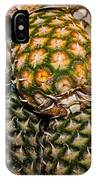 Pineapples And Melons IPhone Case