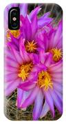 Pink Cactus Flowers Square  IPhone Case