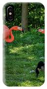 Pink Flamingos And Imposters IPhone Case