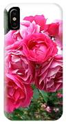Pink Floribunda Roses IPhone Case
