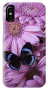 Pink Gerbera Daises And Butterfly IPhone Case