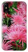 Pink Gerbera Heaven IPhone Case